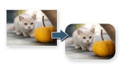 Закруглить углы фото, уменьшить пропорционально онлайн за 1 мин