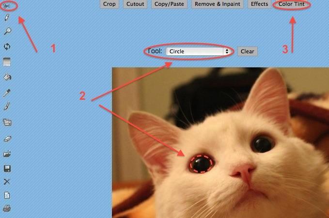 обозначьте область для изменения цвета глаз