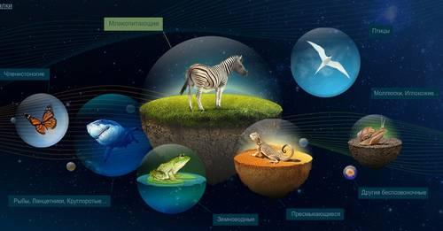Энциклопедия животных онлайн
