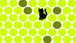 Онлайн игра «Поймай кота»
