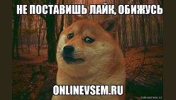 Создать мем онлайн