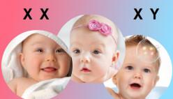 Рассчитай пол будущего ребенка. Калькулятор